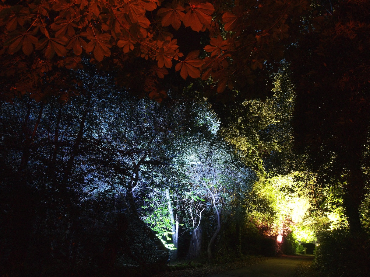 Ballyscullion Park 1