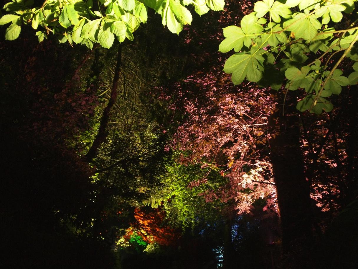 Ballyscullion Park 4