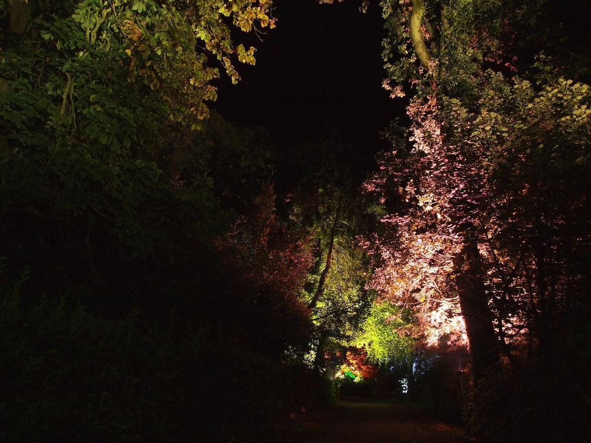 Ballyscullion Park 5