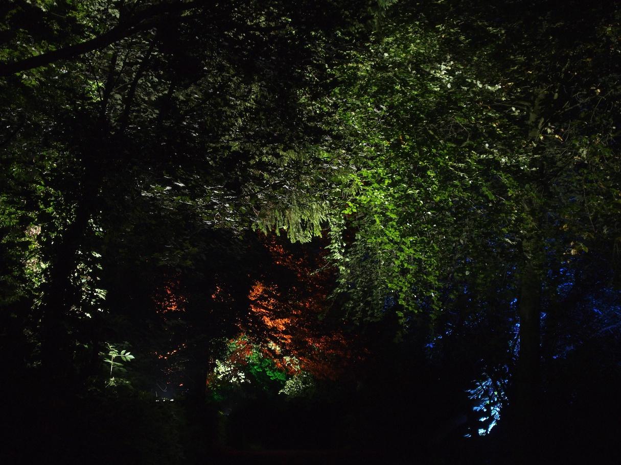 Ballyscullion Park 6