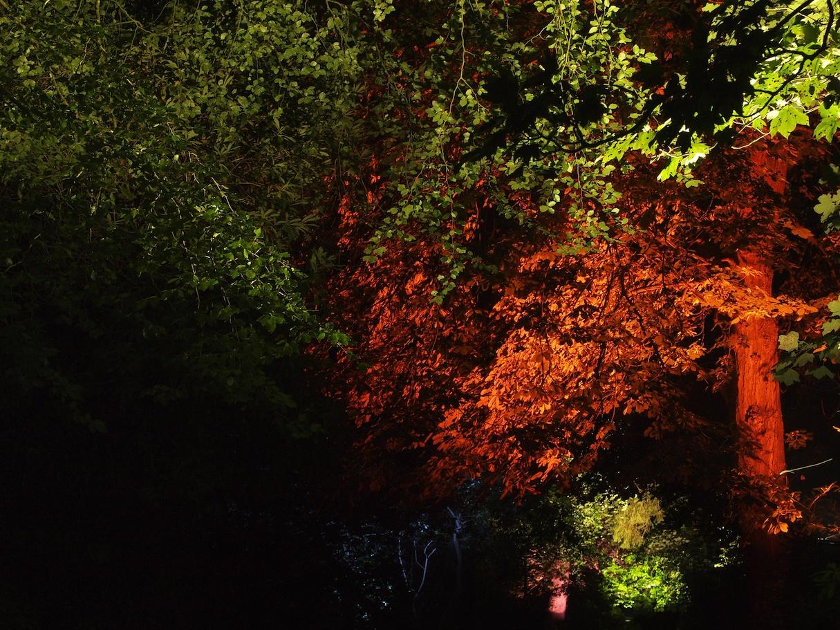 Ballyscullion Park